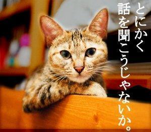 話し聞く猫.jpg